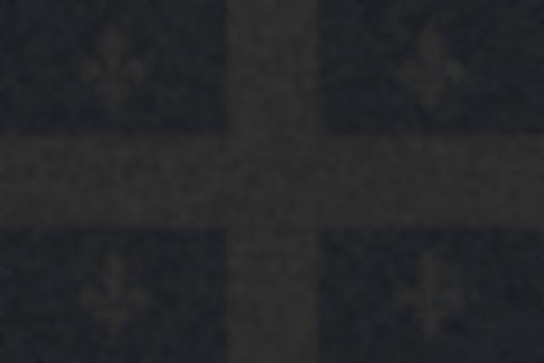 Drapeau du Quebec sombre